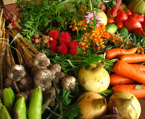 consumir productos ecológicos