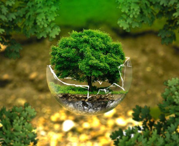 Ya está en vigor en España el acuerdo mundial de París sobre cambio climático