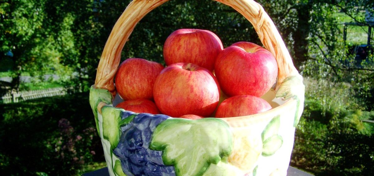5 motivos para el consumo de productos ecológicos