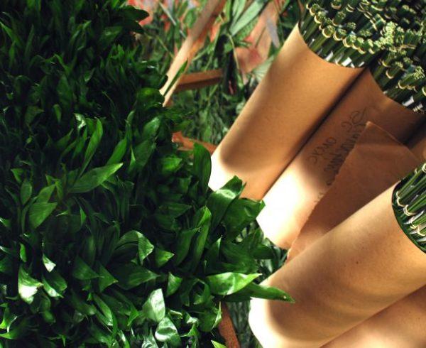 Diferencias entre biológico, ecológico, orgánico y sostenible