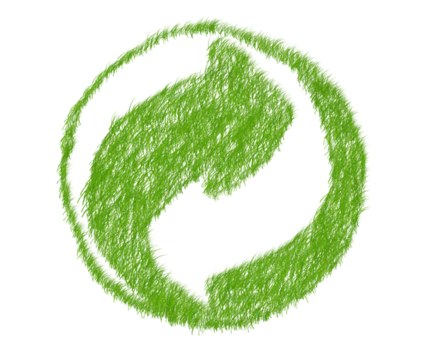 Ecología, ecologismo y ecología política. Las tres disciplinas indispensables para la sostenibilidad