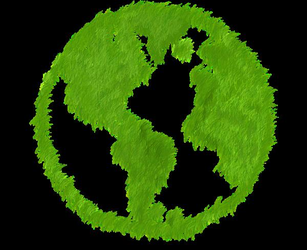 El aumento del mercado ecológico en España