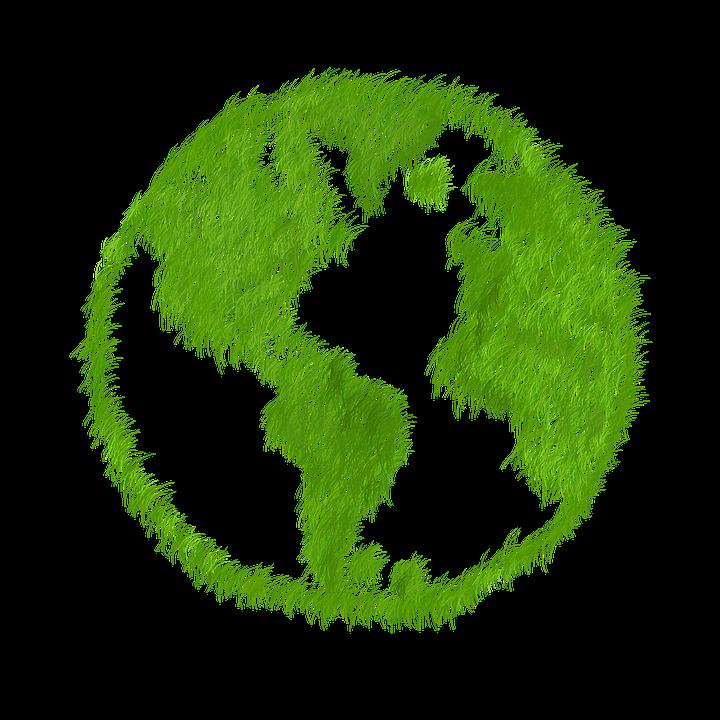 El aumento del mercado ecol gico en espa a ecogra - Luz de vida productos ecologicos ...