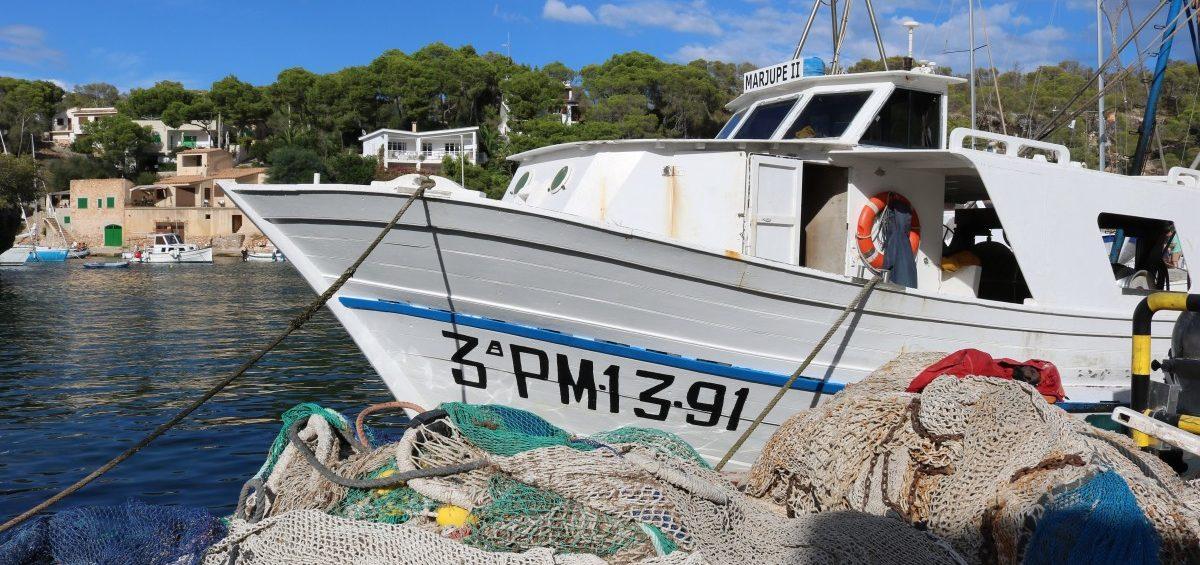 Impacto ecológico de la pesca de arrastre