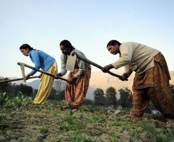 Empoderamiento de las mujeres para frenar el cambio climático