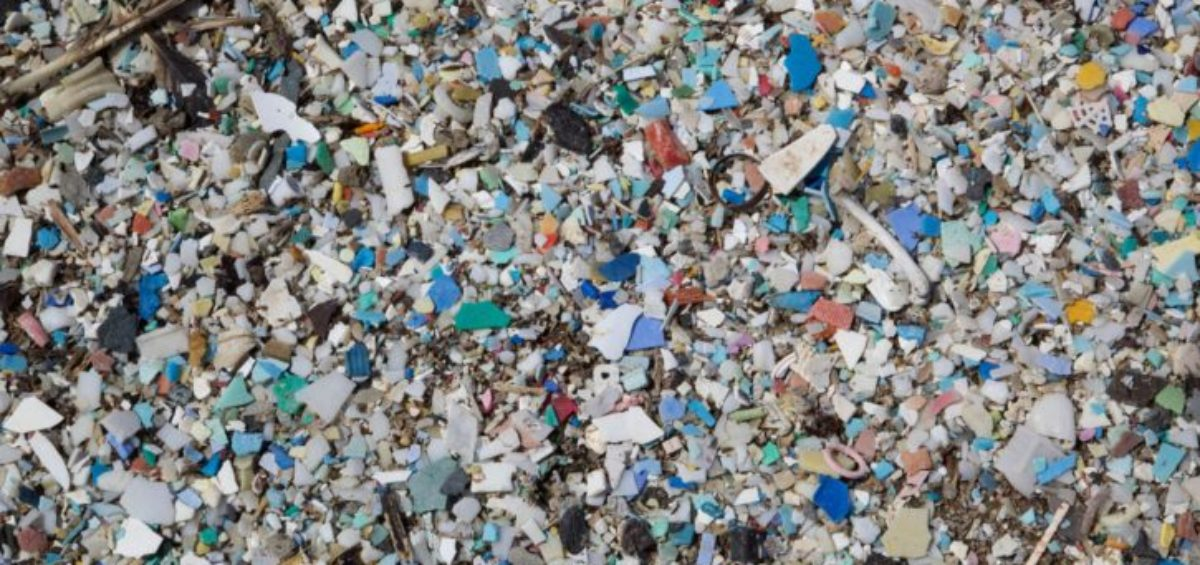 Día Mundial del Medio Ambiente 2018 Sin Contaminación por Plásticos