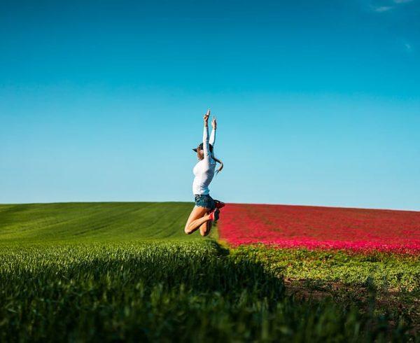 Ecología emocional: ¿qué es?